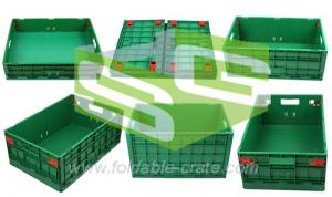China collapsible crate-B series on sale