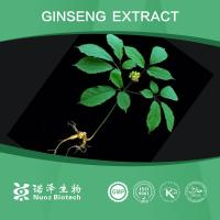 Wholesale supply korean red ginseng extract concentrate powder