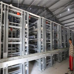 China Farm Automatic Egg Collection System No Egg Breakage For Chicken Egg Land Saving on sale