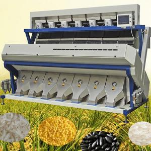 China Agricultural Seeds Color Sorter Bean Nut Brown Rice Color Sorting Machine For Sale on sale