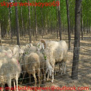 China malla de la cerca del prado para la granja/la granja de ganado galvanizada sumergida caliente que cercan cerca del campo del galvanizado de la malla/, cercado de la vaca on sale