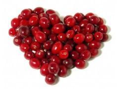 China manufacture supply bilberry extract powder --Vaccinium Macrocarpon L on sale