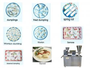 China samosa making machine on sale