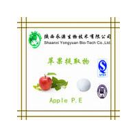 China Organic fresh fruit extract powder 5%/8% good quality Apple Cider Vinegar Powder on sale