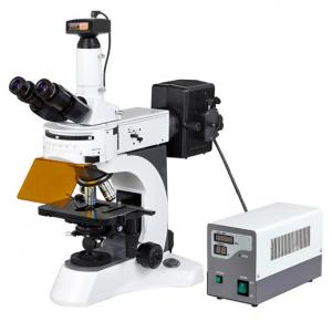 China 9.0 MP Camera Digital Epi Fluorescent Microscopy for Disease Examination/Upright fluorescence microscope on sale