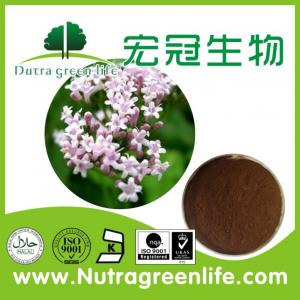 China 0.8% Valeric acids Test By HPLC Valerian Extract on sale