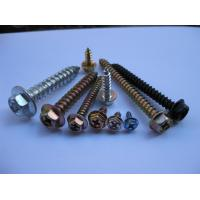 China HEXAGON FLANGE  Self tapping screw on sale