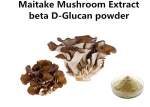 China Food Grade Maitake Mushroom Polysaccharides Extract Light Yellow Fine Powder Anti - Cancer on sale