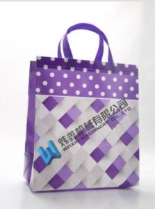 China High Quality Custom Printing Recyclable Laminated PP Non Woven Bag on sale
