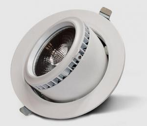 China SAA CE RoHS Trunk Series - 20/28/38W lamp gimbal downlight shop lighting led scoop lighting on sale