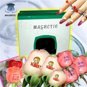 China Fashionable digital nail printer on sale