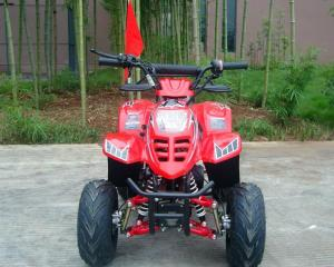China Front Double Swing Arm 70cc ATV Quad Bike 80KG Max Loading High Performance on sale