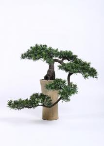China H125cm Bonsai Pine Tree Curved Branch Stunning Wonderfully Crafted Without Pot on sale