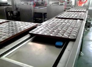 China Bakery Biscuit Making Machine / Small Capacity Fully Automatic Biscuit Machine on sale