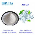 Malaysia hot selling high concentrated ws-23 and fruit flavors for e liquid DIY