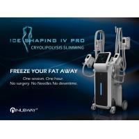 China Hot sale weight loss machine cryolipolysis 4 handles cryolipolysis fat freeze machine on sale