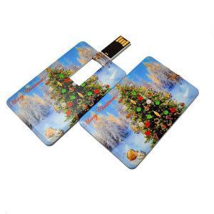 China 4GB OEM Card USB Memory Stick (QT425) on sale