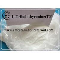 CAS 55-06-1 Fat Loss Hormones Natural Weight Loss Powder T3 Hormones L-Triiodothyronine