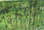 Single Layer Stealth Ghost Hunting Camouflage Netting Lightweight Camo Netting