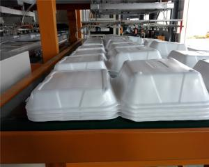China Disposable Absorbent Styrofoam Tray Making Machine With Robort Arm on sale