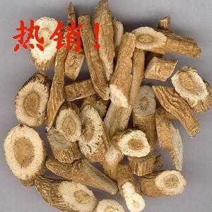 China Best Antiviral Natural Extract Top Quality Radix Isatidis Extract Radix Isatidis P.E. on sale