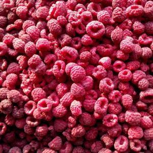 China Whole/Crumble IQF Frozen Fruit / Raspberry Bulk Packing 10kgs/12.5kgs on sale