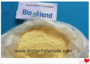China Highly Effective Muscle Building Steroids White Powder Trenbolone Enanthate 10161-33-8 on sale