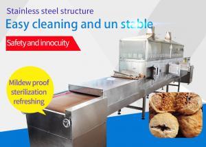 China Good Reputation Factory Supplier Speed Adjustable Fig Conveyor Belt Microwave Sterilization Machine on sale