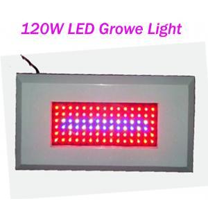China OEM Customized Led Plant Growing Lighting 120W AC85 - 265V Red / Blue 300mA on sale