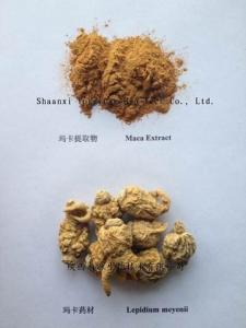 China Maca Extract  10:1 TLC Brown powder  Cistanche tubulosa Extract Epimedium Breviconum P.E. enhance energy on sale