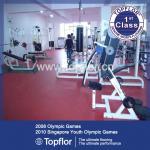 PVC Gym Flooring Mat