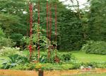 Размер х 36 пакета размера Л73 пакета кольев завода томата сада металла высокорослый или товеринг, вам нужна наша шпалера лестницы
