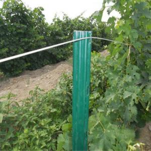 China Durable Garden Plant Support Posts C Shaped / U Shaped Heat Treated on sale
