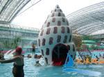 A multi plataforma nivelada Shell pulveriza o equipamento do divertimento do parque da água de Aquasplash para adultos
