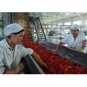 China 3000L / H Turn Key Orange Apple Juice Concentrate Machine Automatic Control on sale