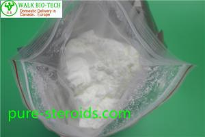 Quality Bodybuilding Boldenone Steroids Boldenone Acetate Powder CAS 2363 - 59 - 9 for sale