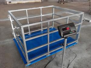 China Livestock scale/ animal scale for sheep goat hog pig cow animal weighing with cage on sale