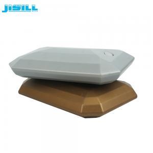 China Material plástico seguro do alimento dos blocos de gelo do congelador do bloco de gelo do fã da forma irregular on sale