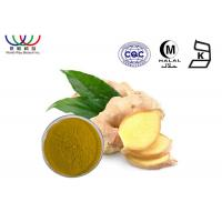 Food Grade Pure Ginger Extract , Organic Ginger Extract For Digestive Health
