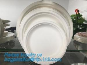 China Compostable biodegradable dinner plate corn starch plate,Elegant Disposable Corn Starch Bio Plastic Dinner Plates bagpla on sale