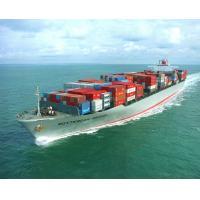 International Shipping Forwarder Ocean Freight Shipping from Xiamen/Fujian To Felixstowe / London /Southampton