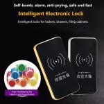 Intelligent Electronic Sauna Lock, Locker Induction Door Lock