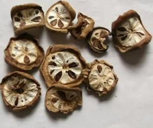 China Akebia quinata Thunb Dence fruits slices herb chinese traditional medicine Yu zhi zi on sale
