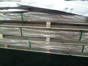 China High Grade 304 304L Stainless Sheet 0.6mm Thickness with Hot  rolled on sale