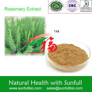 China Rosemary extract, rosmarinic acid, Natural antioxidant, water soluble on sale