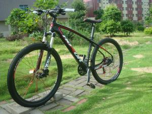 Quality 26er Carbon 30 Speed Mountain Bike under Brand of HONOR of Internal Cable for sale