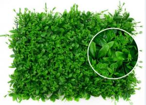 PE/PU Aglaia Odorata Artificial Plant Wall Green Color 10cm