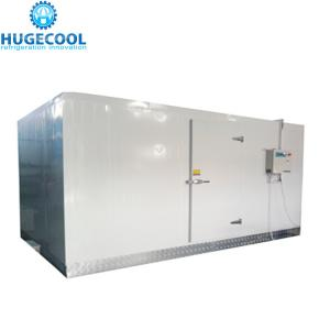 China Walk In Chiller Freezer Cold Room 1 Year Warranty With Air Conditioning on sale