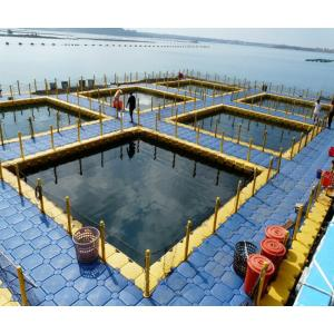 Quality HDPE pontoon for Fish Farming for sale