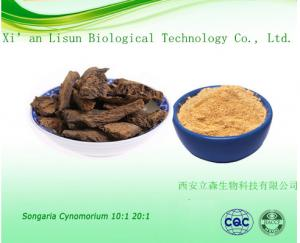 China Songaria Cynomorium Herb Extract on sale